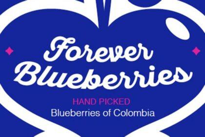 Forever Blueberries