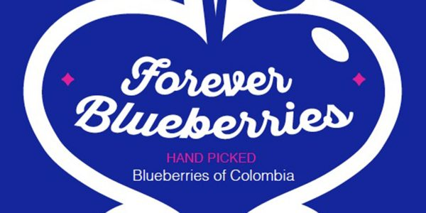 Forever Blueberries